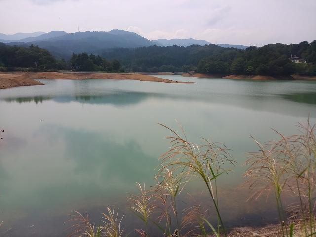 s-5桜ヶ池
