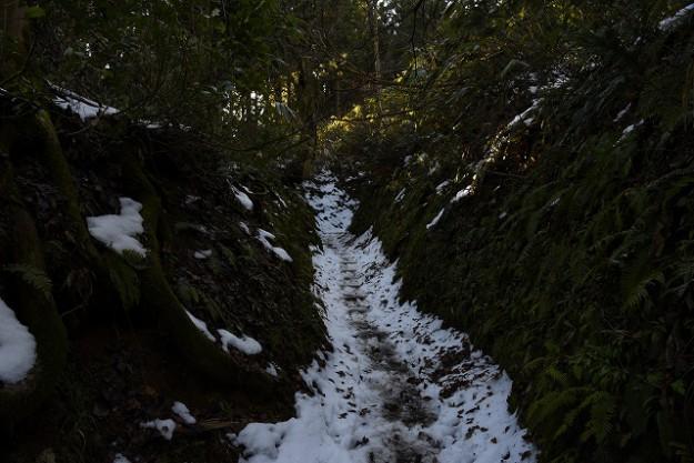 s-登山道雪