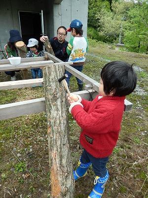 シイタケの原木作りー2