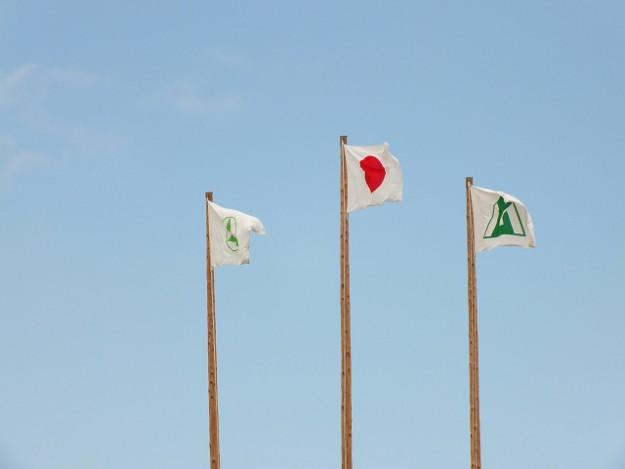 s-1119国旗