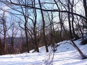 s-薪の山