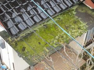 s-隣屋根