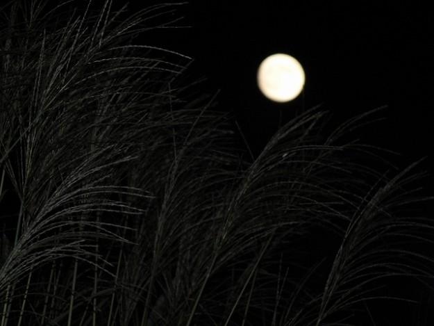 s-満月大