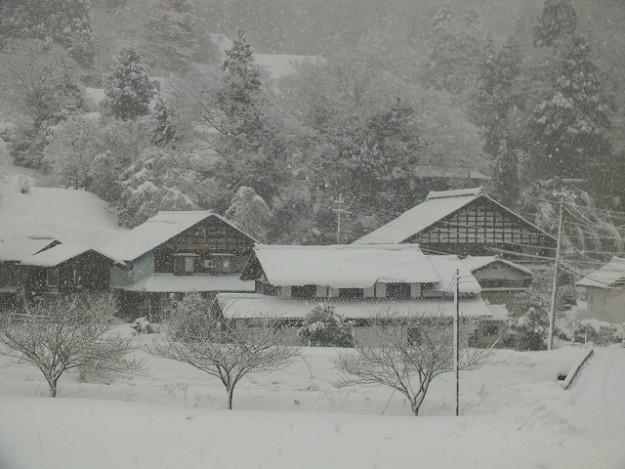 s-波浪風雪大雪注意報