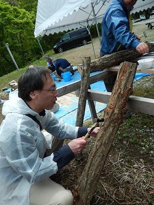 シイタケの原木作り-4