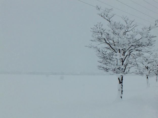s-冬景色