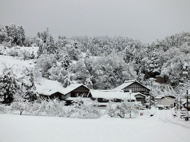 s-12300708雪景色