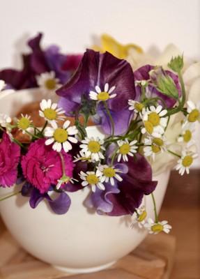 春の花を飾る